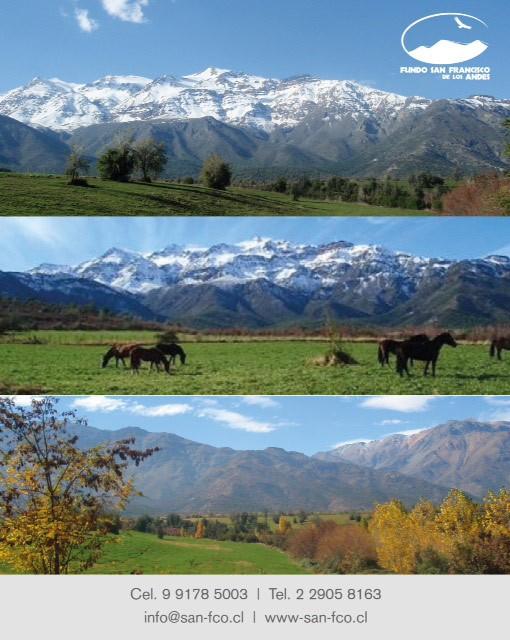 Fundo San Francisco de los Andes - Maravillosas parcelas tranquilidad y seguridad